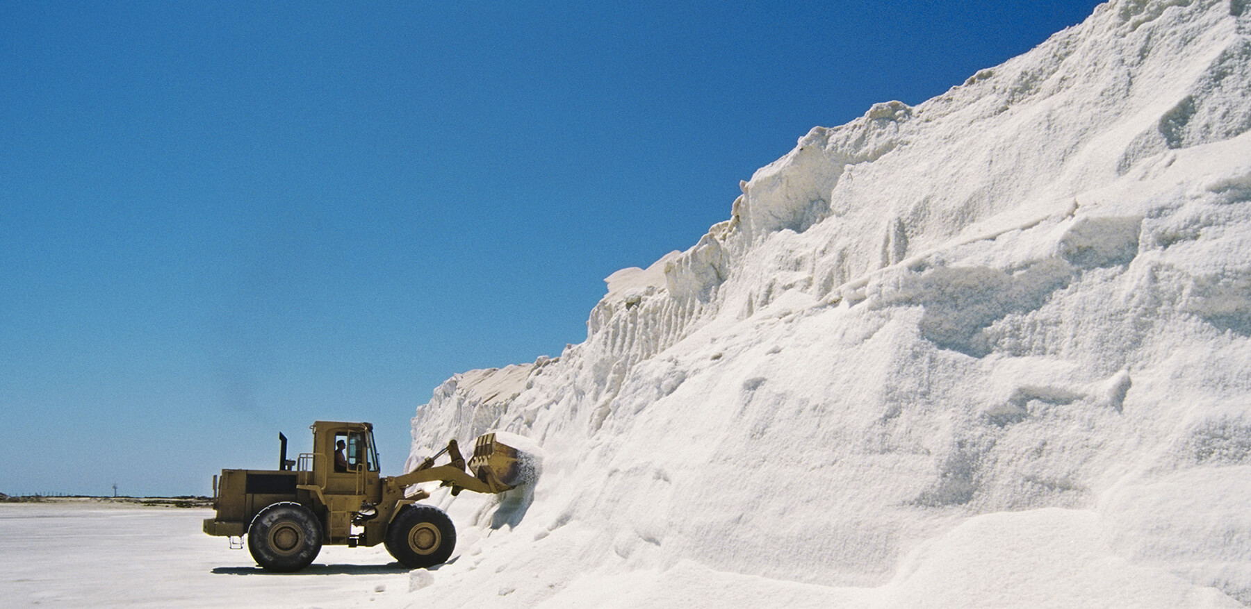 bulk salt supplying company