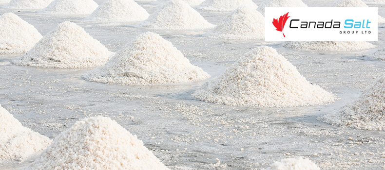 Things To Keep In Mind When Buying Rock Salt - Canada Salt