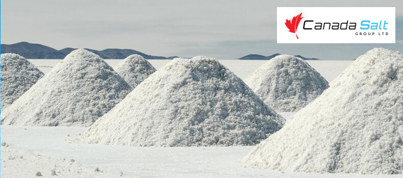 9 Mind Blowing Facts About Salt You Should Know - Canada Salt