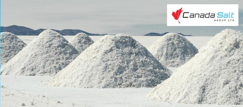 9 Mind Blowing Facts About Salt You Should Know - Canada Salt